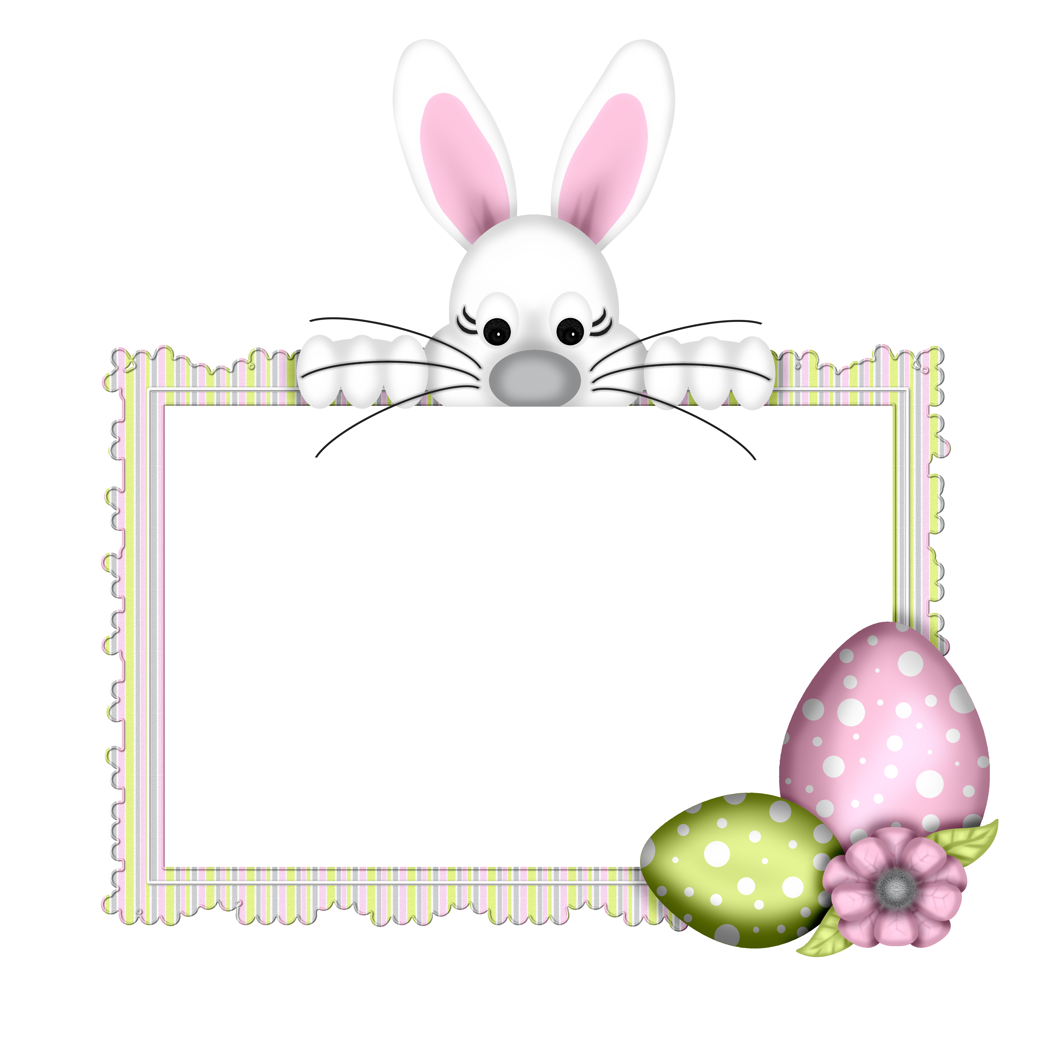 Bunnies Hare Easter Photography Egg Bunny PNG Image