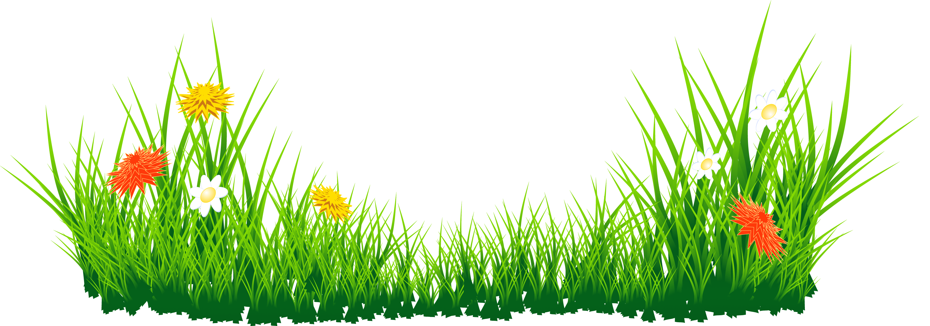 Easter Grass PNG Image