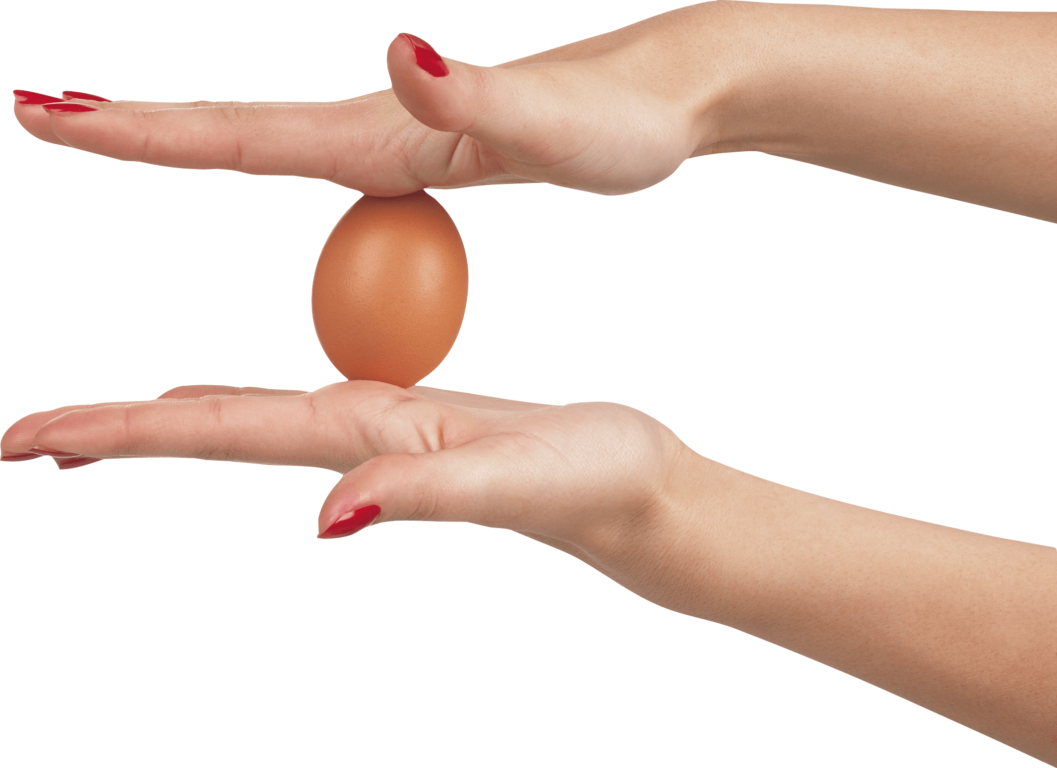 Egg In Hands Png Image PNG Image