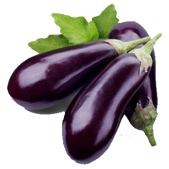 Eggplant Free Download Png PNG Image