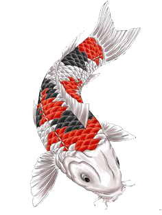 Fish Tattoos Picture PNG Image