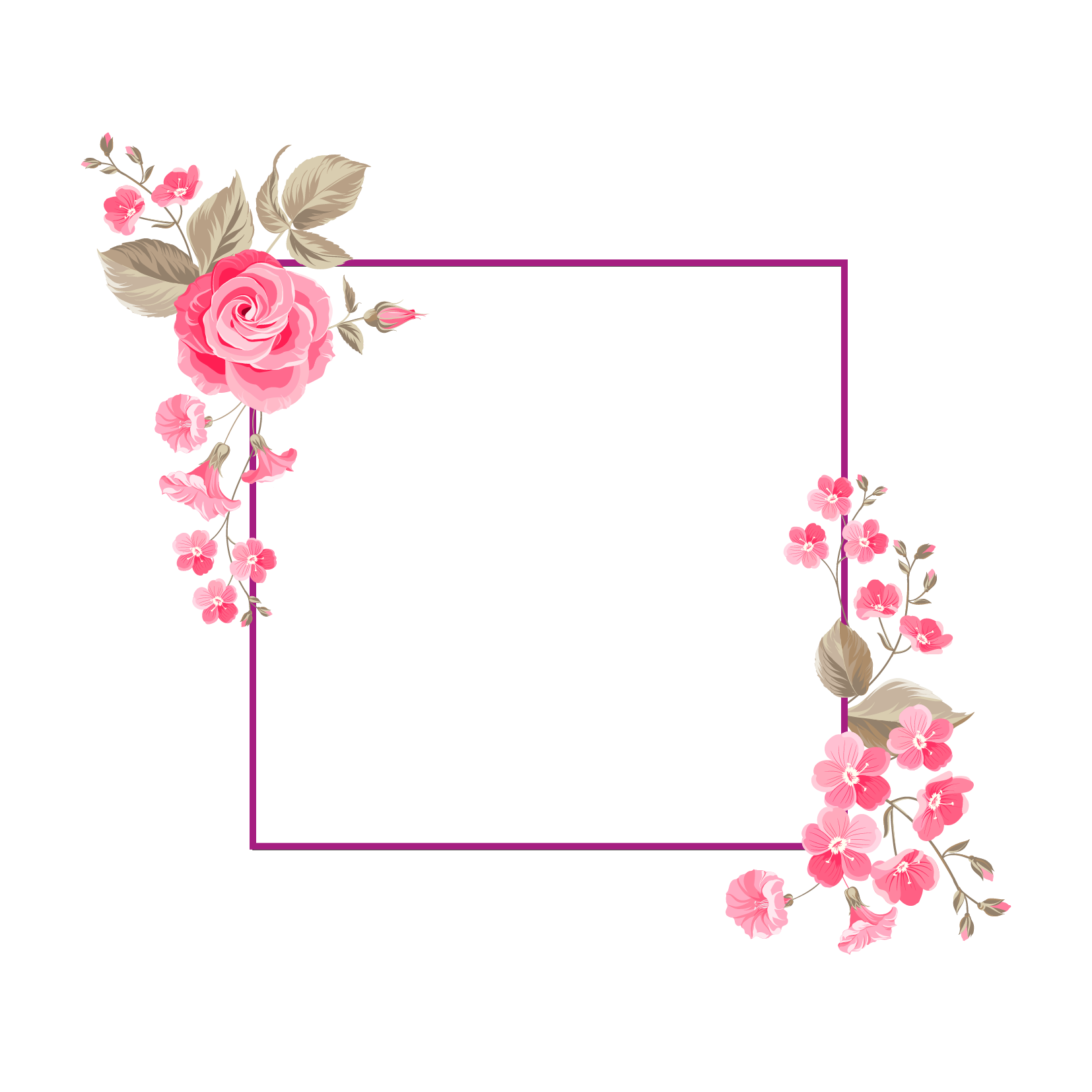 And Flower Portable Floral Vector Design Graphics PNG Image