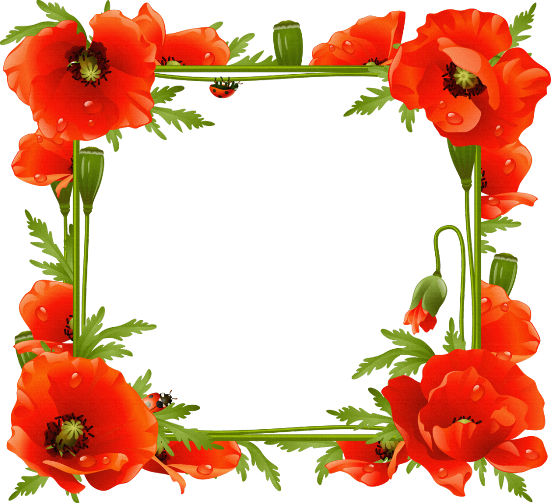 Picture Flower Frame Common Frames Poppy PNG Image