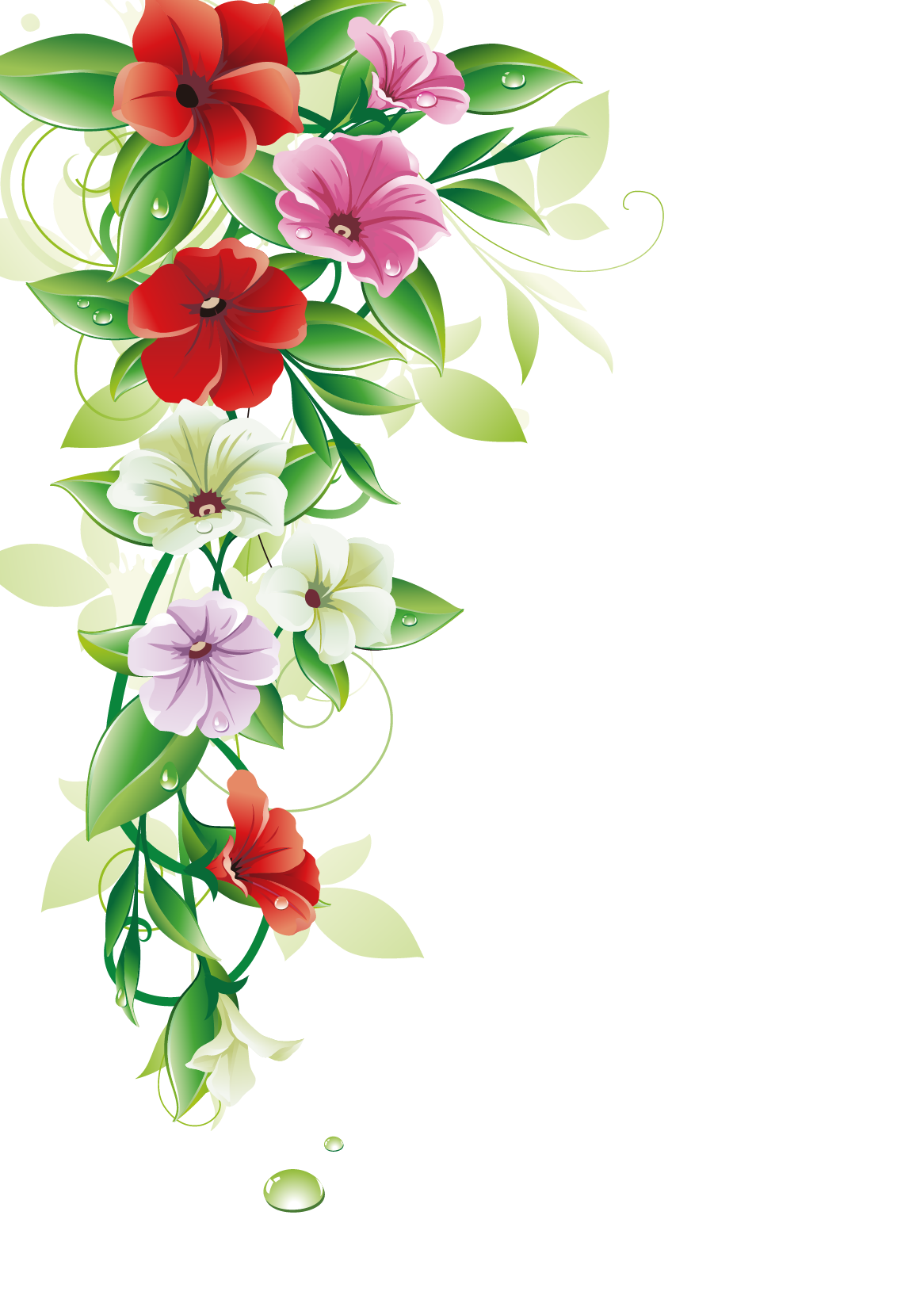 Flower Border Free Photo PNG PNG Image