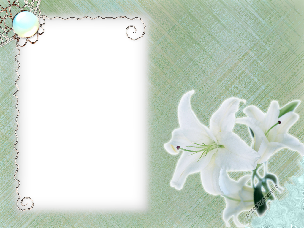 White Flower Frame Transparent Free Photo PNG PNG Image