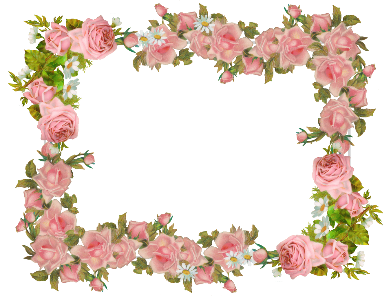 And Flower Vintage Frame Paper Rose Frames PNG Image