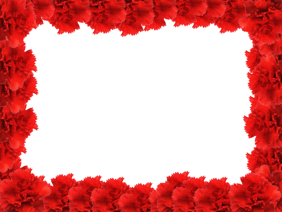 Picture Frame Flower Red Rose PNG File HD PNG Image