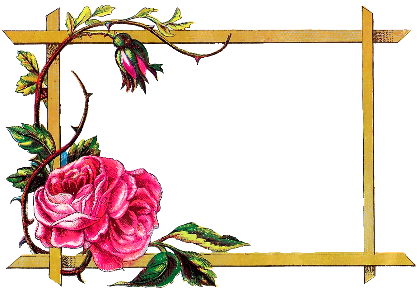 Frames Picture Frame Flower Art Free Photo PNG PNG Image