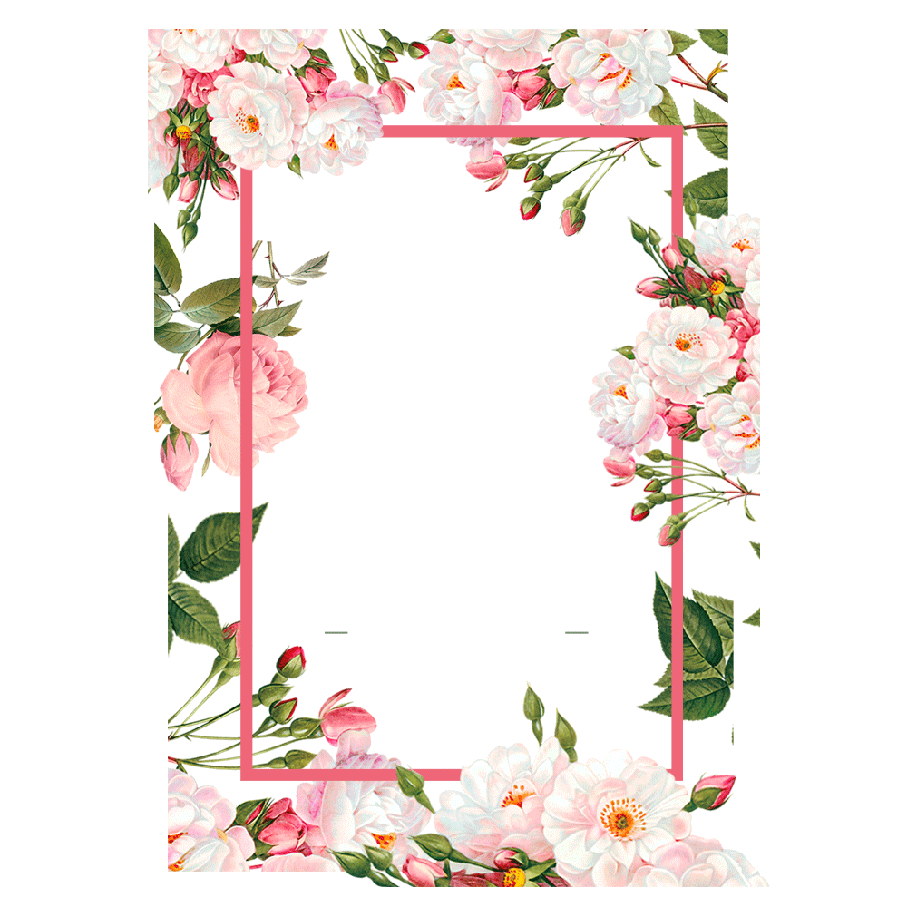 Pink Borders Flower Free PNG HQ PNG Image