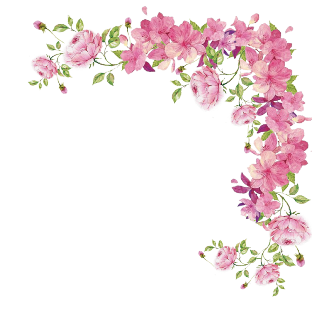 Pink Rose Flowers Border Flower Free Photo PNG PNG Image