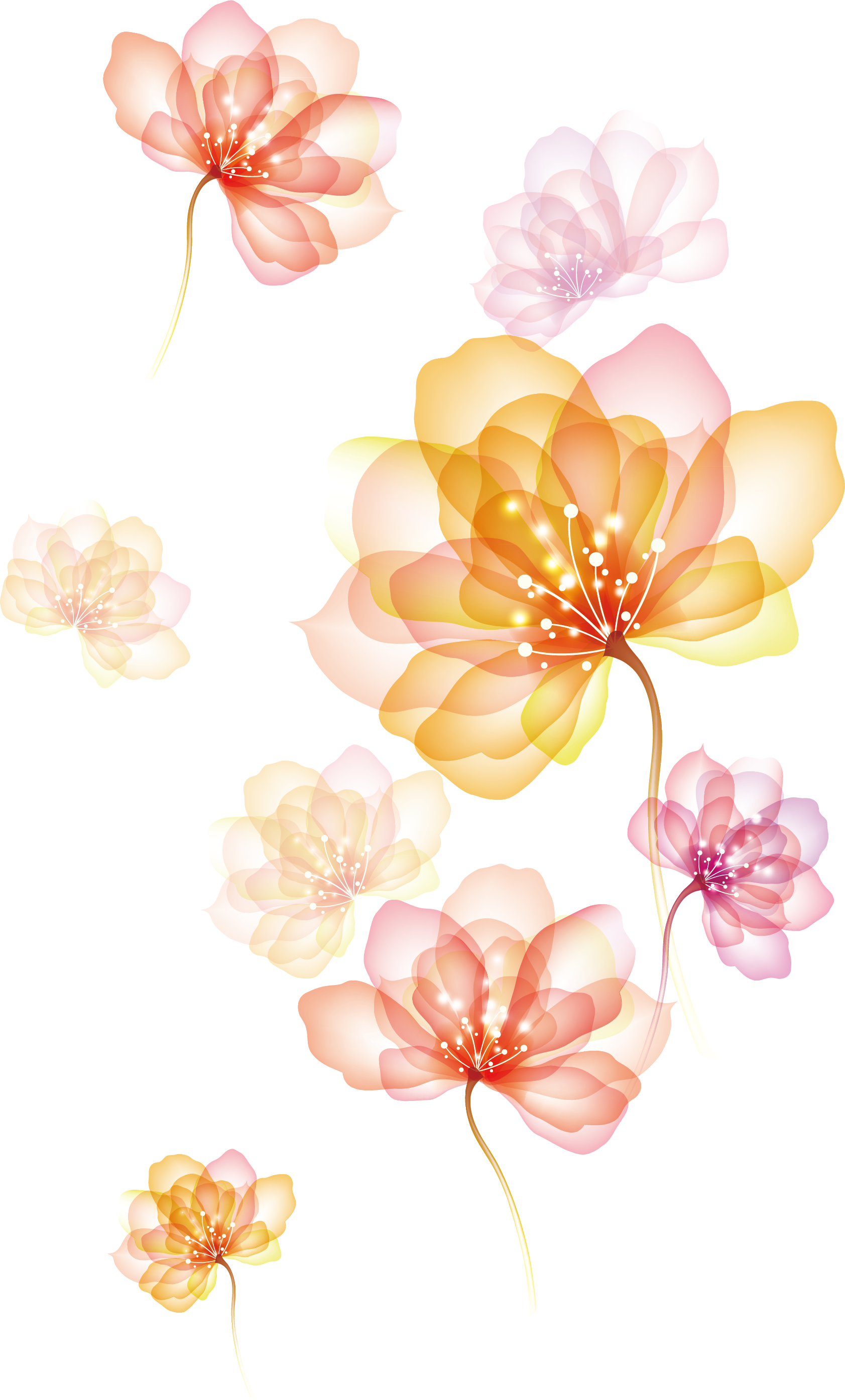 Of Spreading Flowers Effect Download Free Image PNG Image