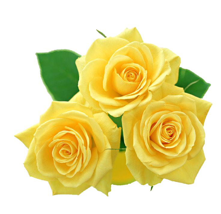Yellow Flowers Bouquet File PNG Image
