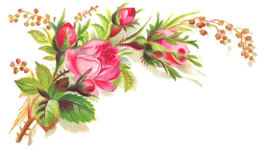 Pink Roses Flowers Bouquet Transparent Background PNG Image