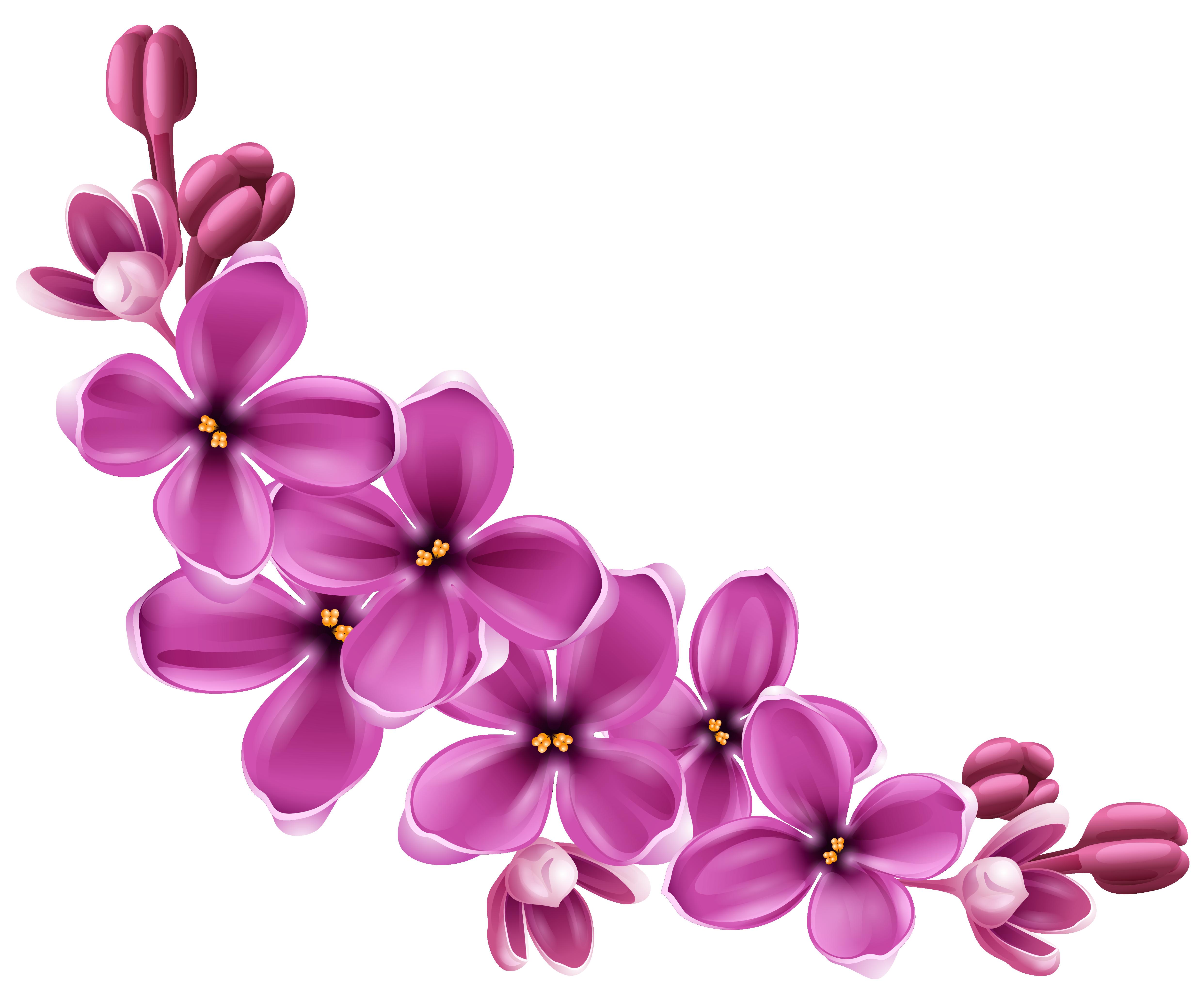 Гугл картинки цветы пнг, пришло лето открытка