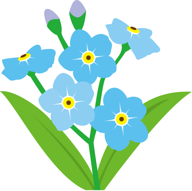 Forget Me Not Transparent Background PNG Image