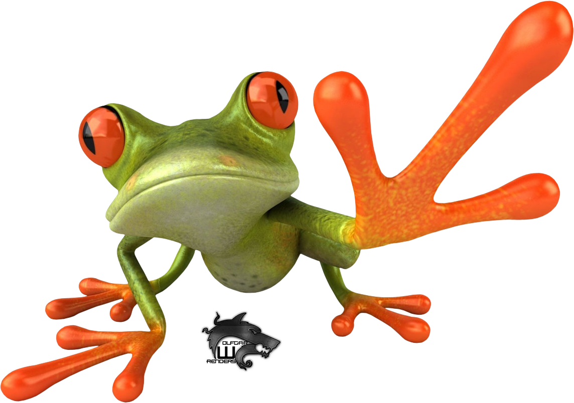 Frog Image PNG Image