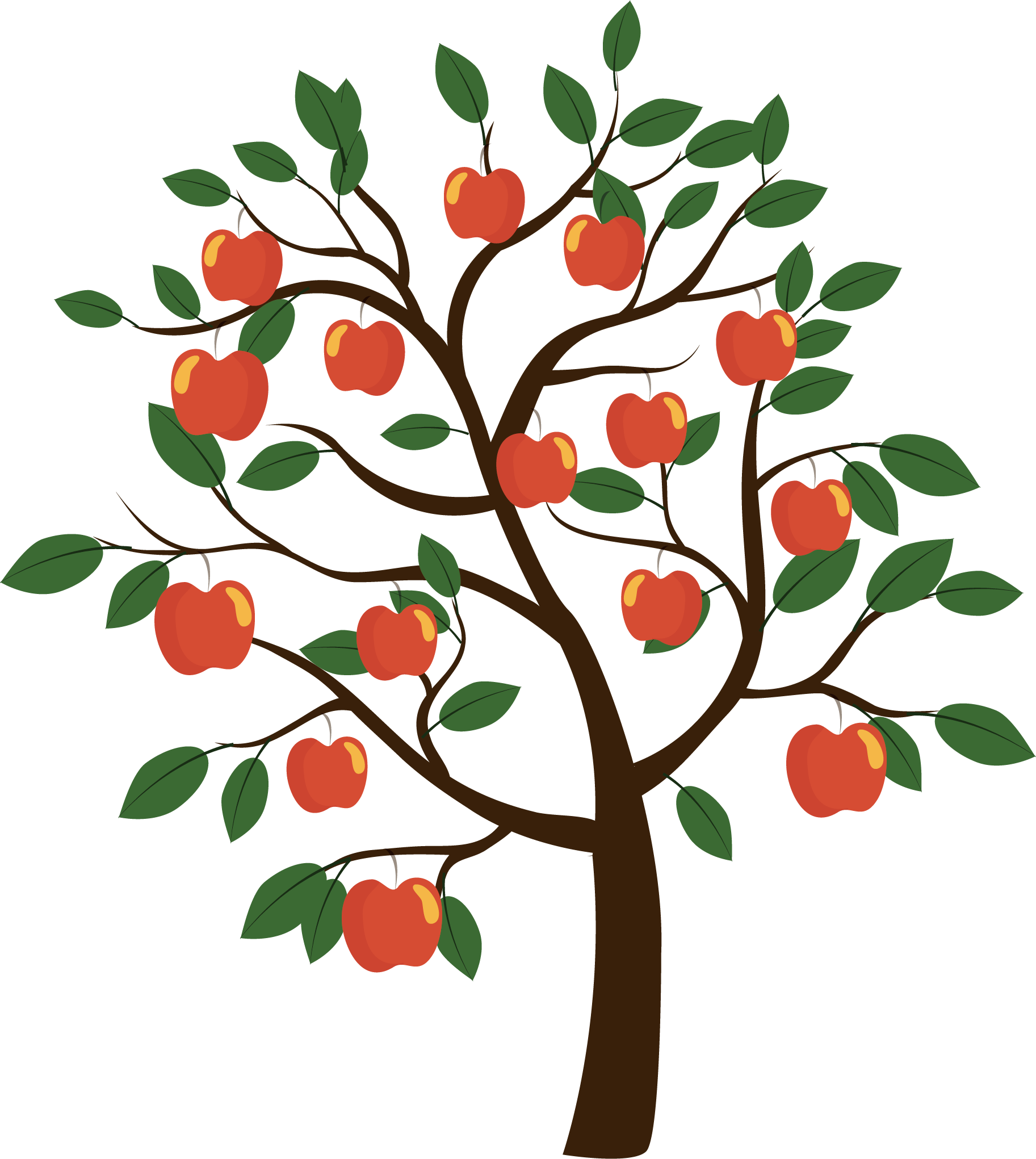 Vector Euclidean Fruit Tree Apple Free HQ Image PNG Image