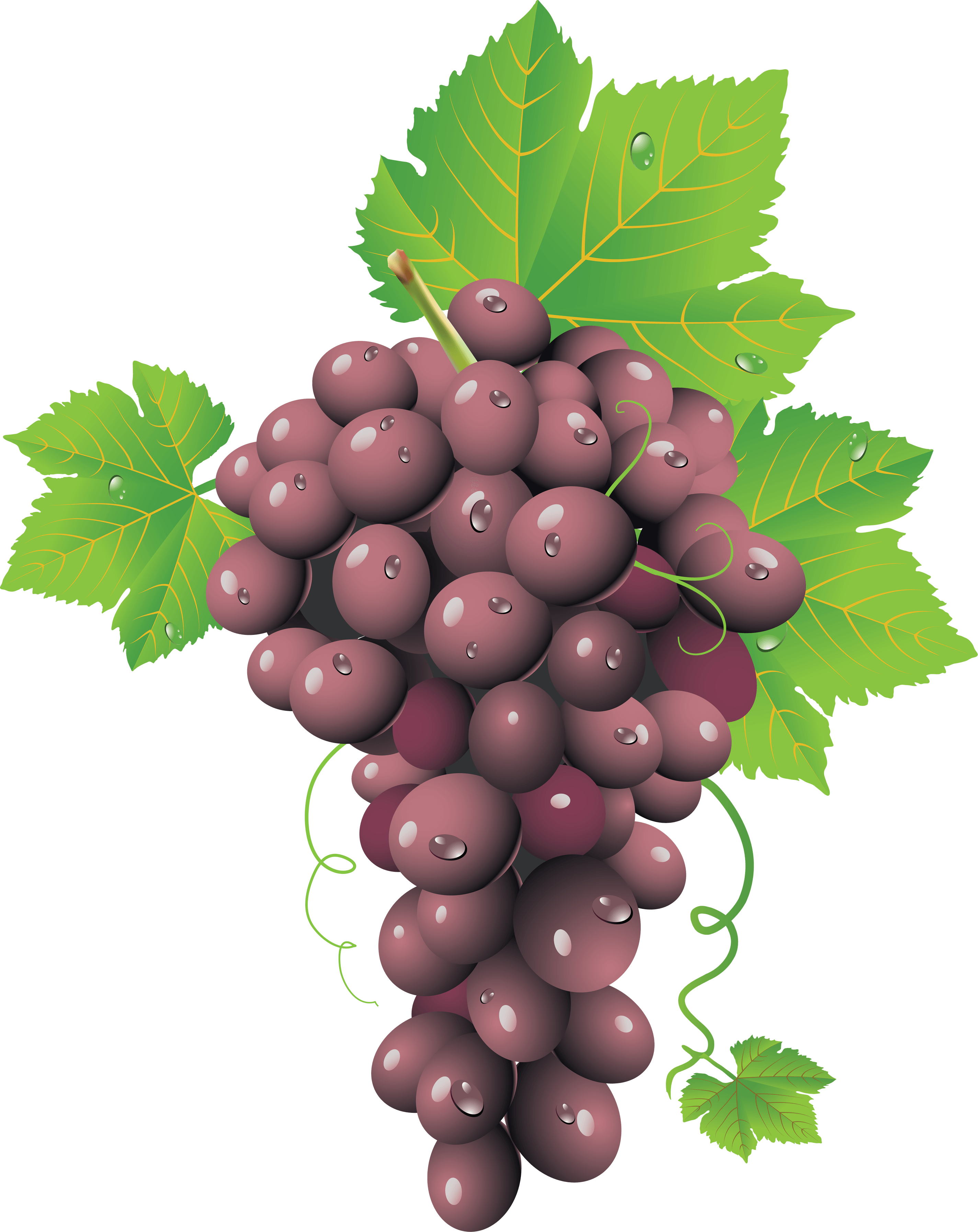 Red Grape Png Image PNG Image
