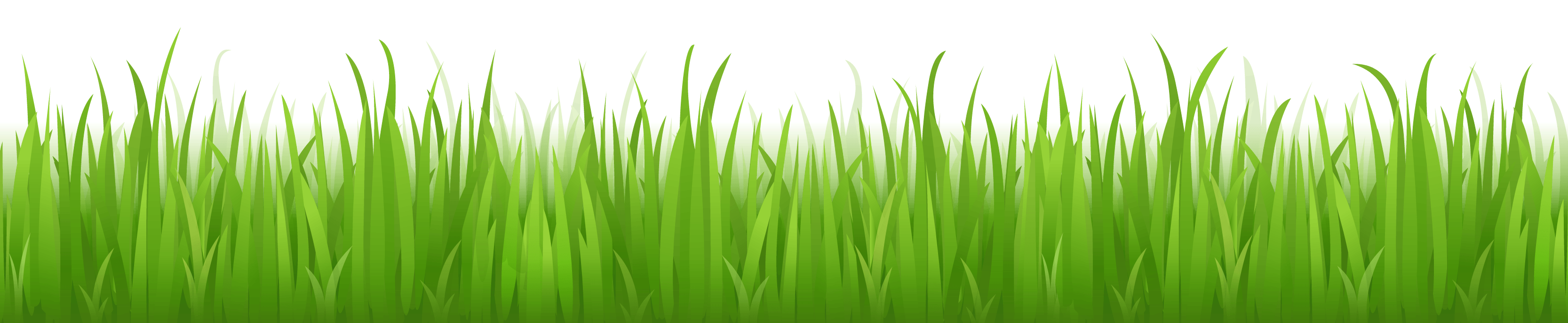 Grass Png Image Green Picture PNG Image