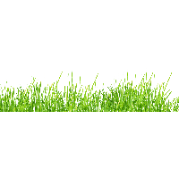 download grass free png photo images and clipart freepngimg leaves border clipart black and white leaves border clipart black and white