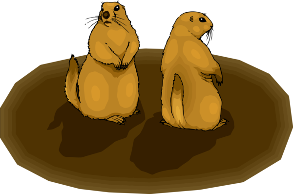 Groundhog Day California Sea Lion Seal Cartoon For Eve Party 2020 PNG Image