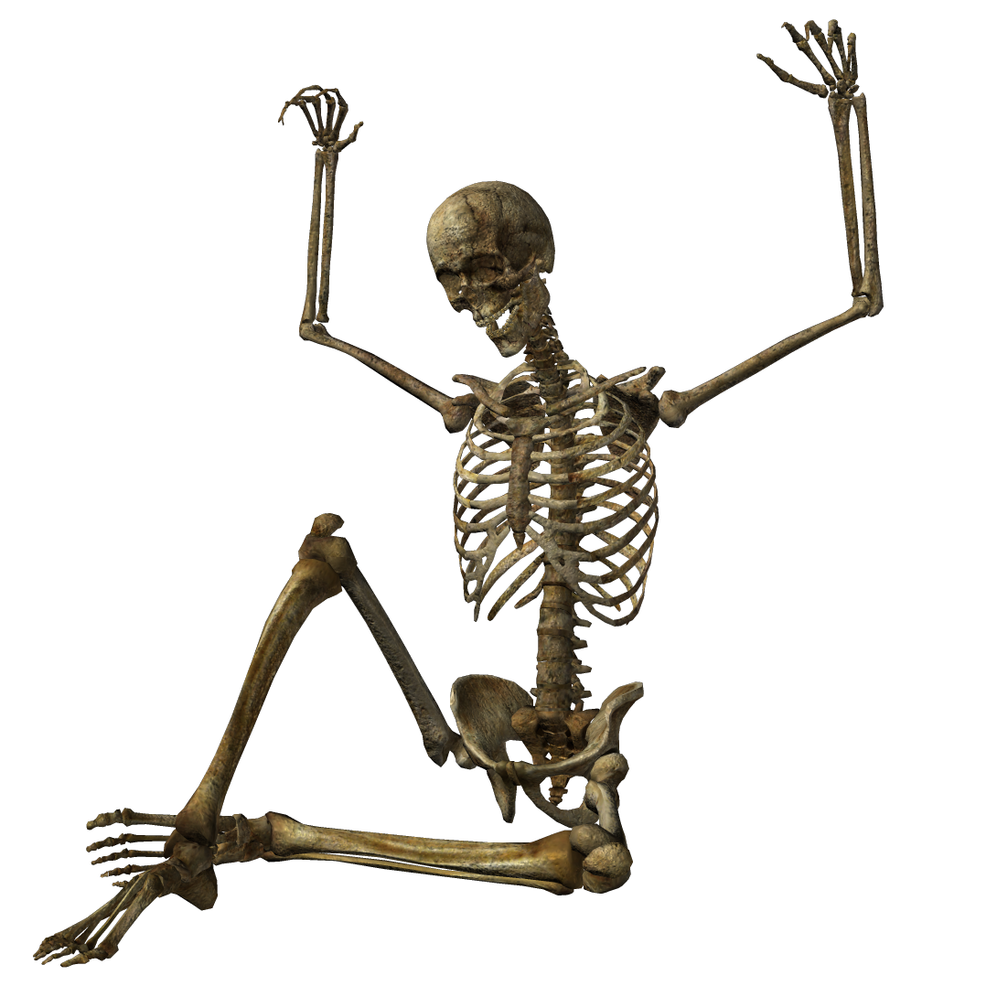 Halloween Skeleton PNG Image