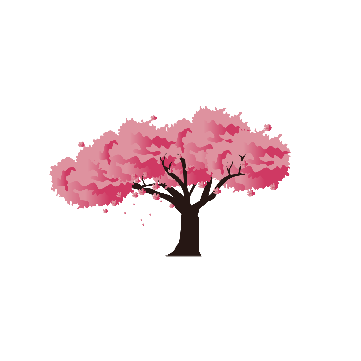 Pink Blossom Cherry National Festival Japan Icon PNG Image