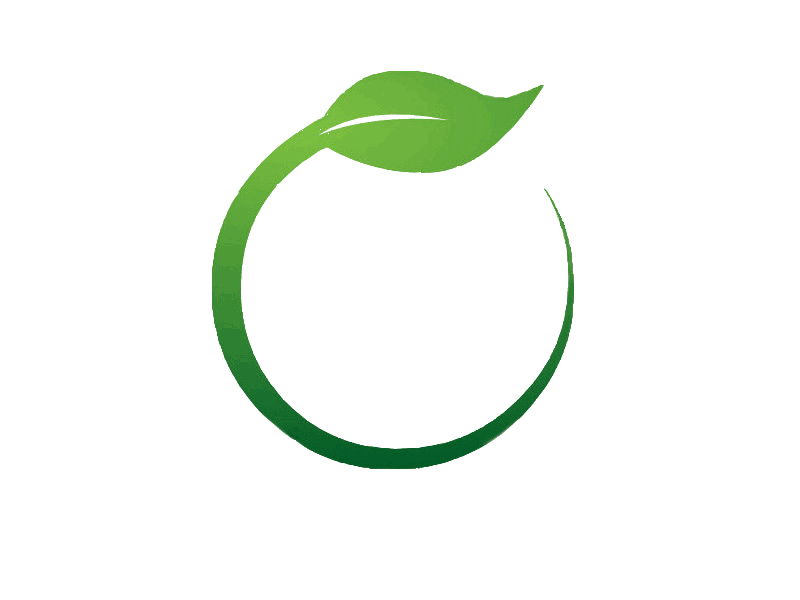 Green Leaf Picture Free PNG HQ PNG Image