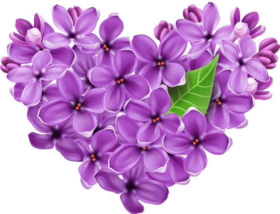 Lilac Transparent Background PNG Image