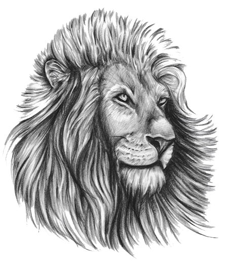 Lion Tattoo Free Download Png PNG Image