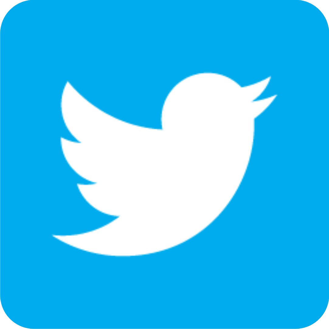 Icons Media Twitter Computer Social Logo Bird PNG Image