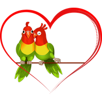 Download Love Birds Free PNG Photo Images And Clipart