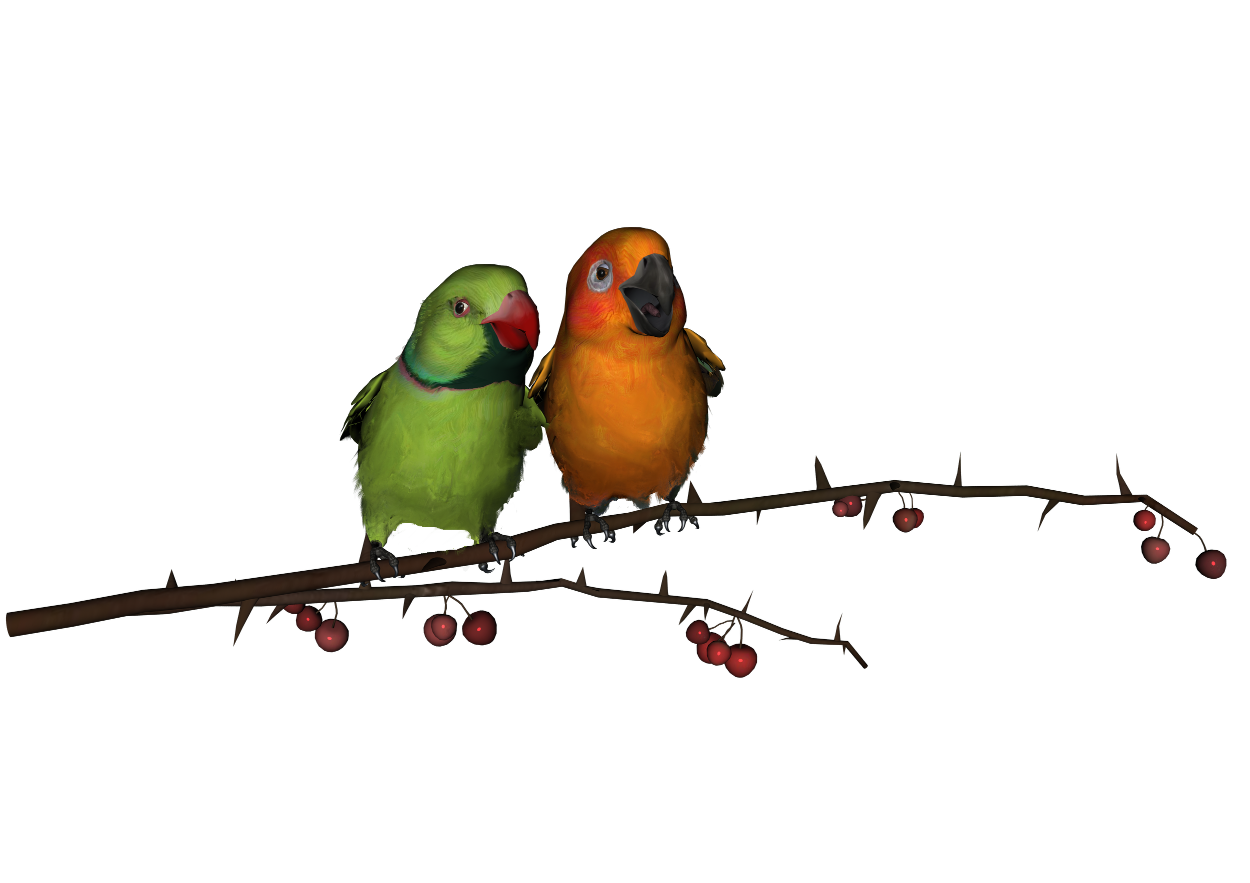 Love Birds Download Png PNG Image