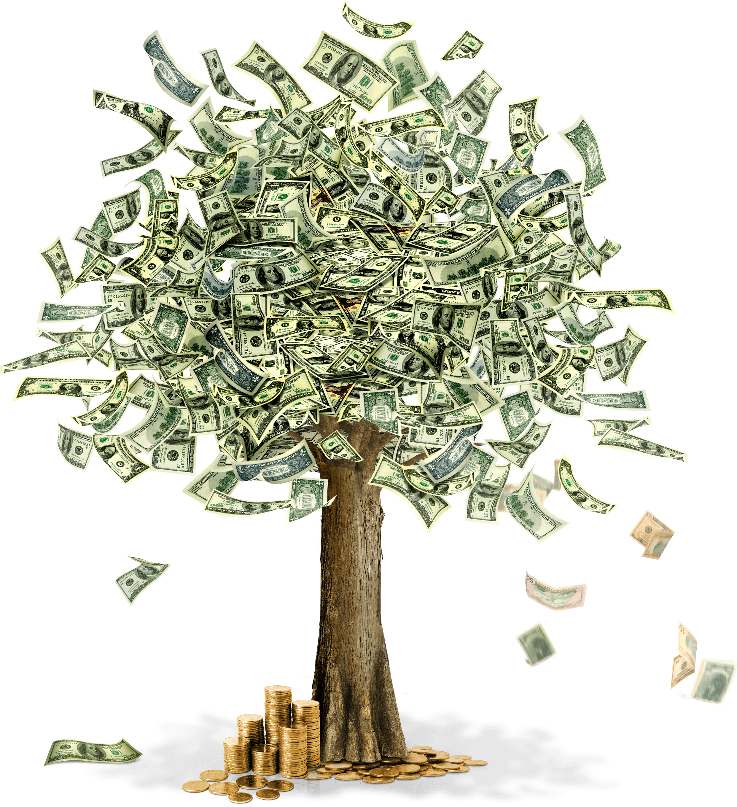 Money Moneytree Free HD Image PNG Image