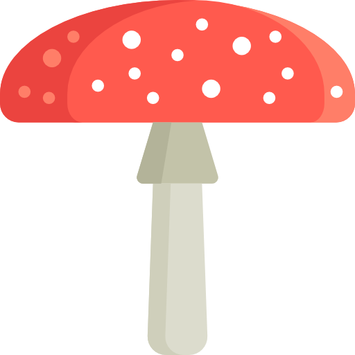 Amanita Muscaria Photos PNG Image