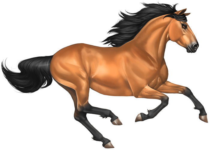 Mustang Horse Image PNG Image