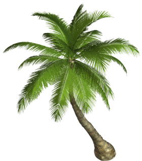 Nature Download Png PNG Image