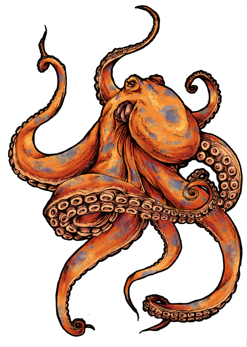 Tattoo Black-And-Gray Sleeve Picture Octopus Drawing PNG Image