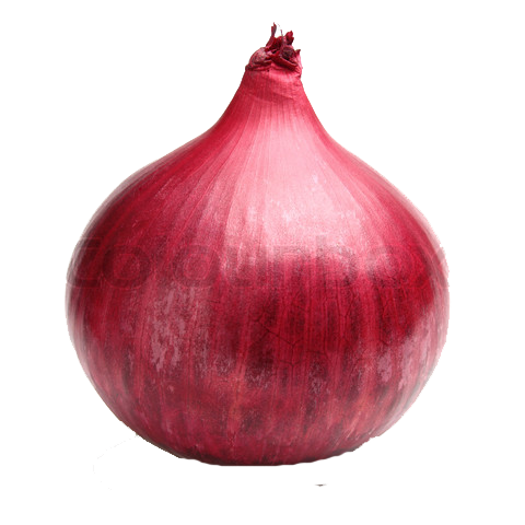 Red Onion File PNG Image