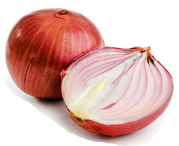 Onion Picture PNG Image