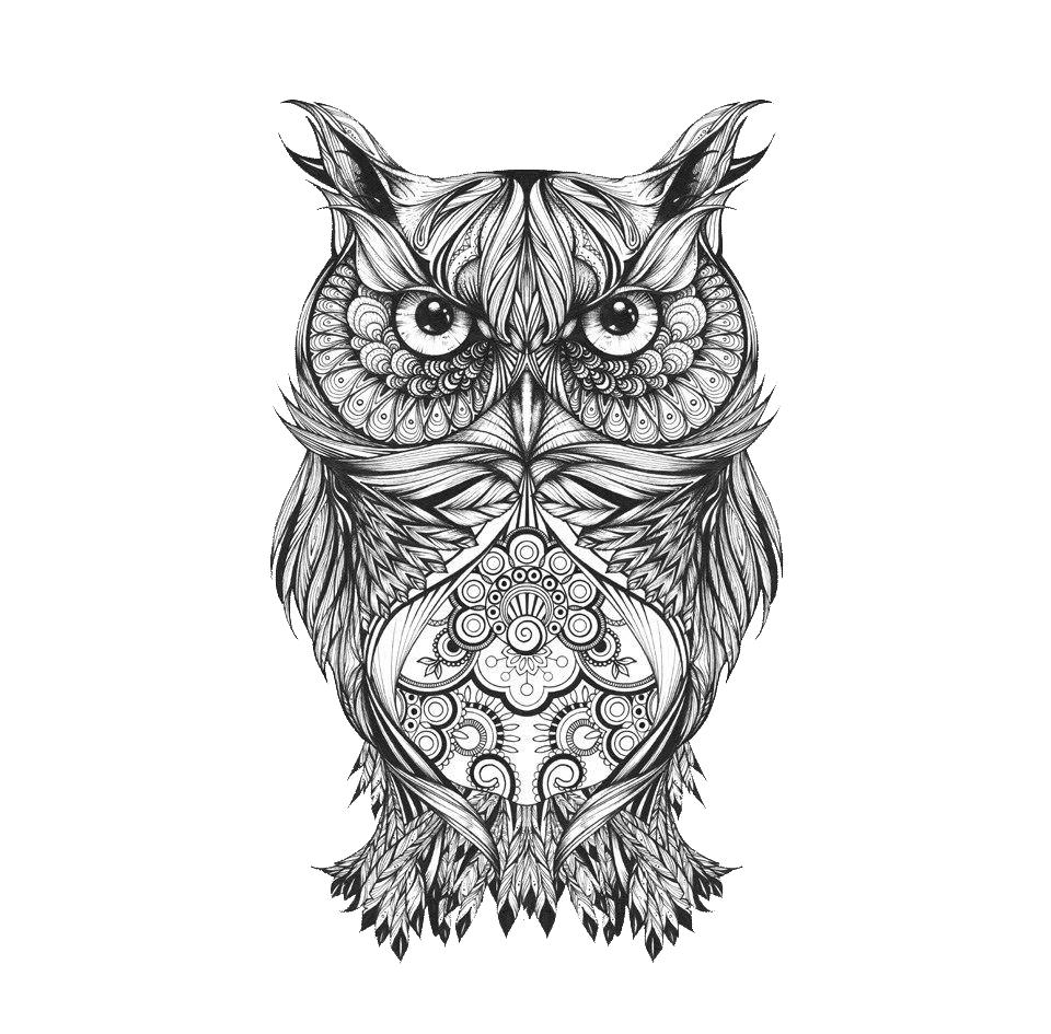 Download Body Owl Sketch Art Tattoo Drawing Hq Png Image Freepngimg