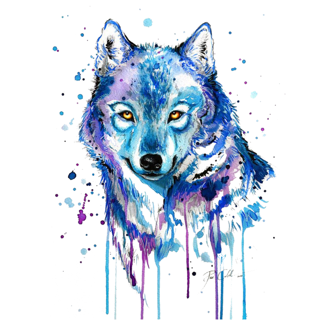 Gray Tattoo Abstract Watercolor Wolf Painting Drawing PNG Image
