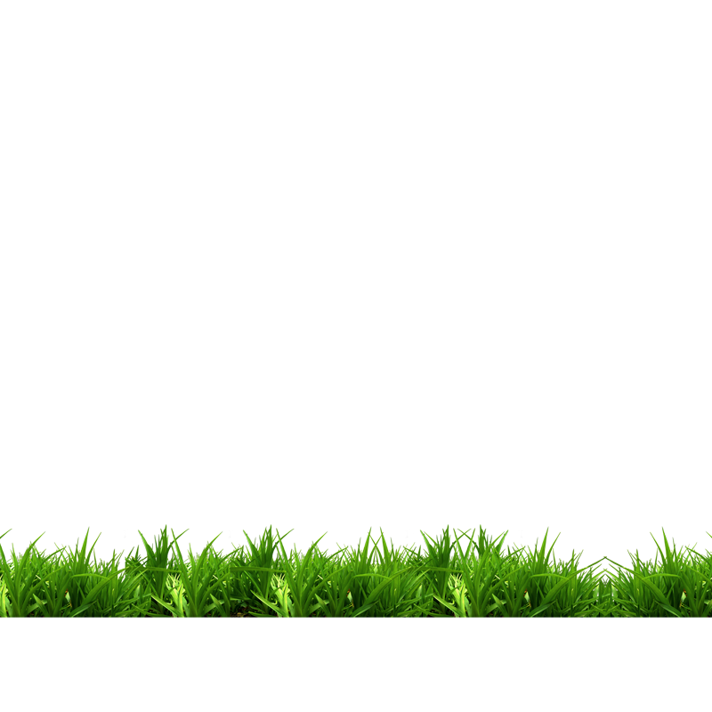 Green White Grass Park Bench Free Frame PNG Image