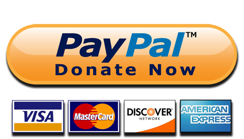 Paypal Donate Button High-Quality Png PNG Image
