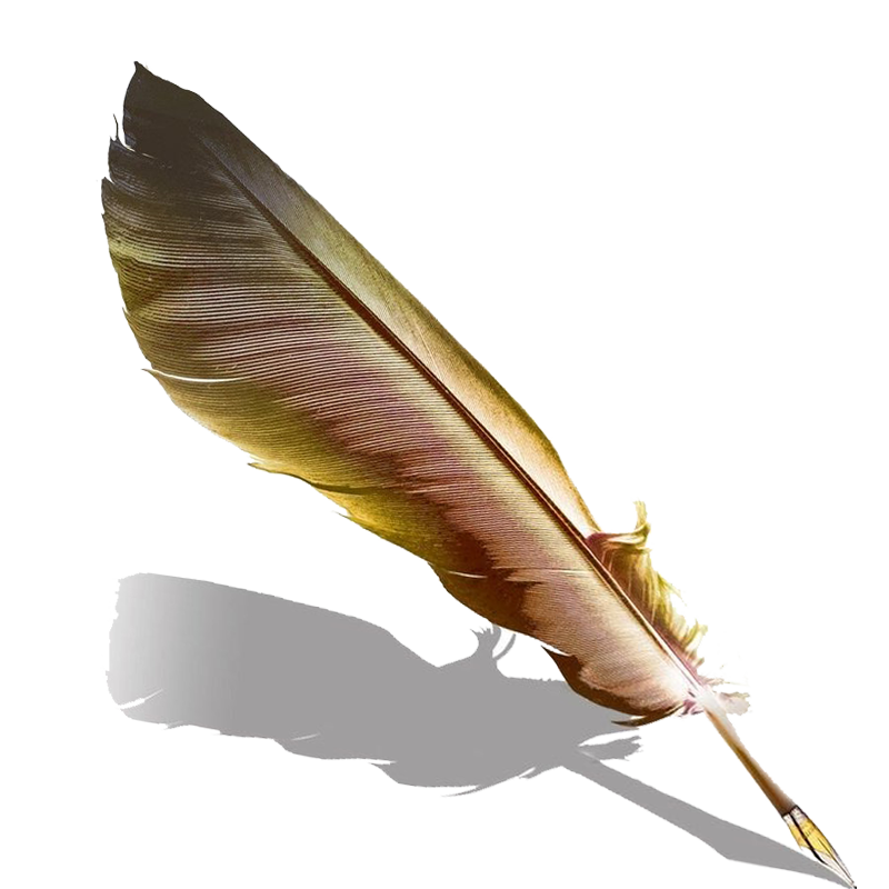 Pen Fountain Feather Quill HD Image Free PNG PNG Image