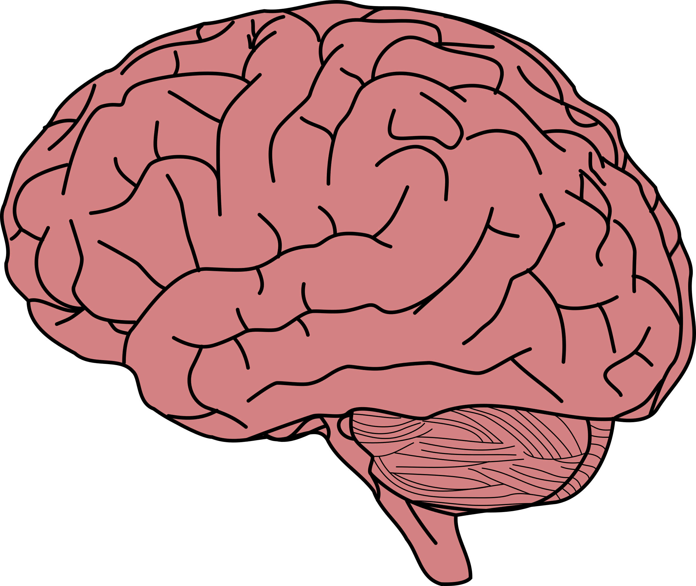 Прикольный рисунок мозга, новогодние открытки рабочий