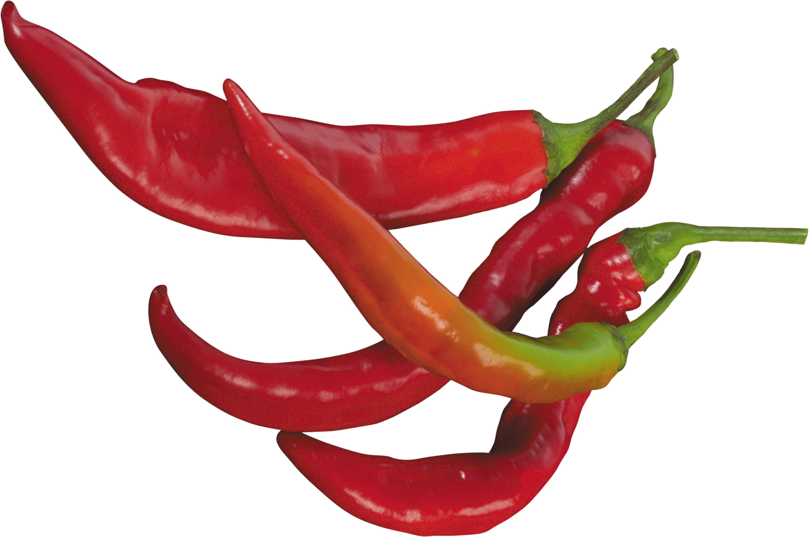 Red Chili Pepper Png Image PNG Image