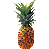 Download Pineapple Free Png Photo Images And Clipart