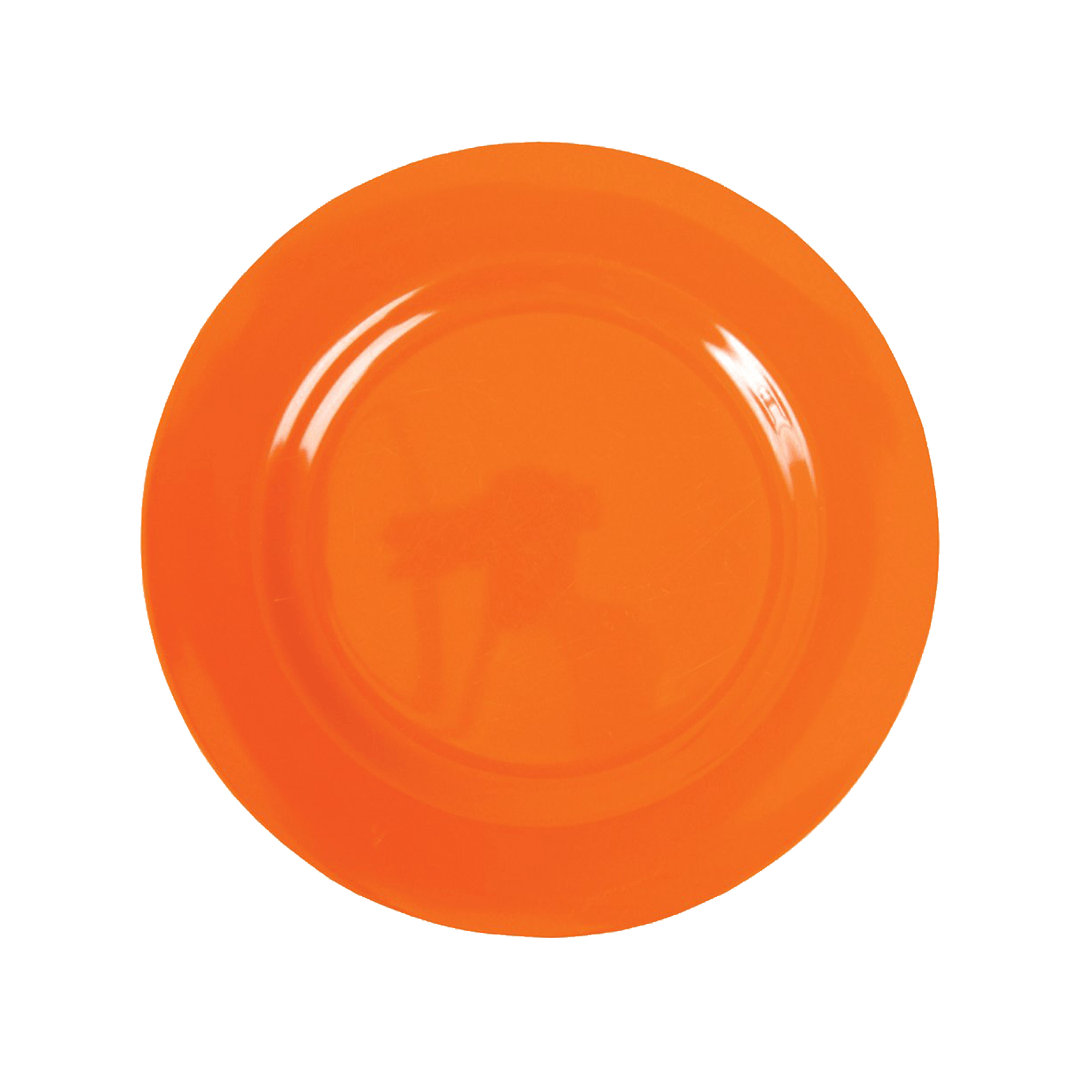 Ornage Plate Dish Png Image PNG Image
