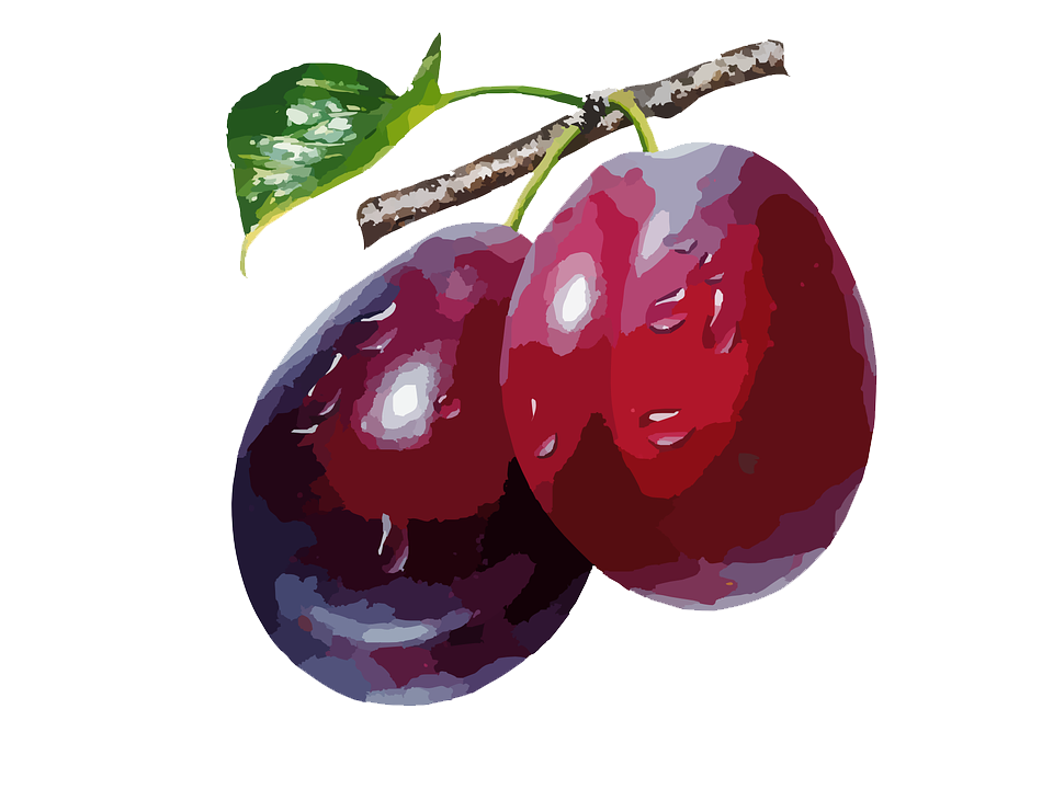 Plum High-Quality Png PNG Image